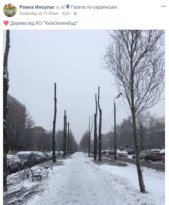 Киевский Изенгард: коммунальщики оставили бульвар без деревьев, фото-1