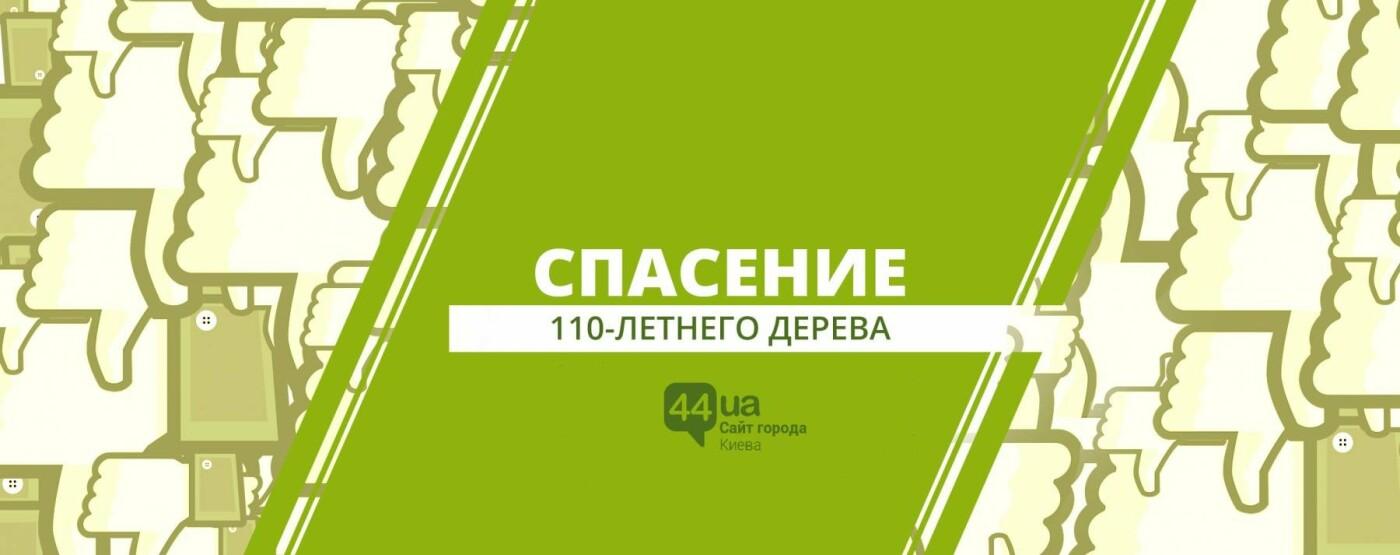 Шесть киевских петиций: что актуально прямо сейчас, фото-3