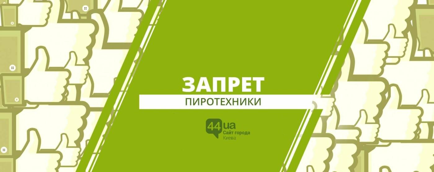 Шесть киевских петиций: что актуально прямо сейчас, фото-5