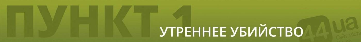 Центр Киева, ДТП и убийство: что происходит в правительственном квартале, фото-1
