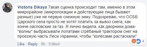 Киевские коммунальщики покатались вместо уборки снега, фото-6
