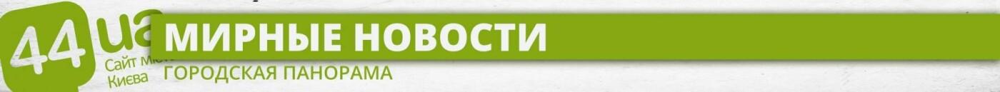 Киев год назад: поймали вора с рогаткой (и другие новости), фото-1