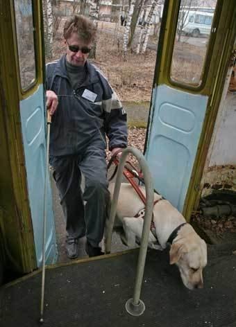 Люди как звери: резонансные убийства животных в Киеве, о которых говорили все, фото-16