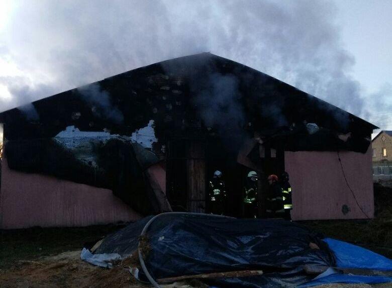 Под Киевом сгорела конюшня, погибли лошади, фото-1