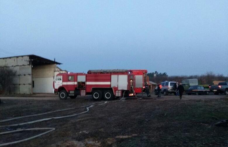 Под Киевом сгорела конюшня, погибли лошади, фото-2