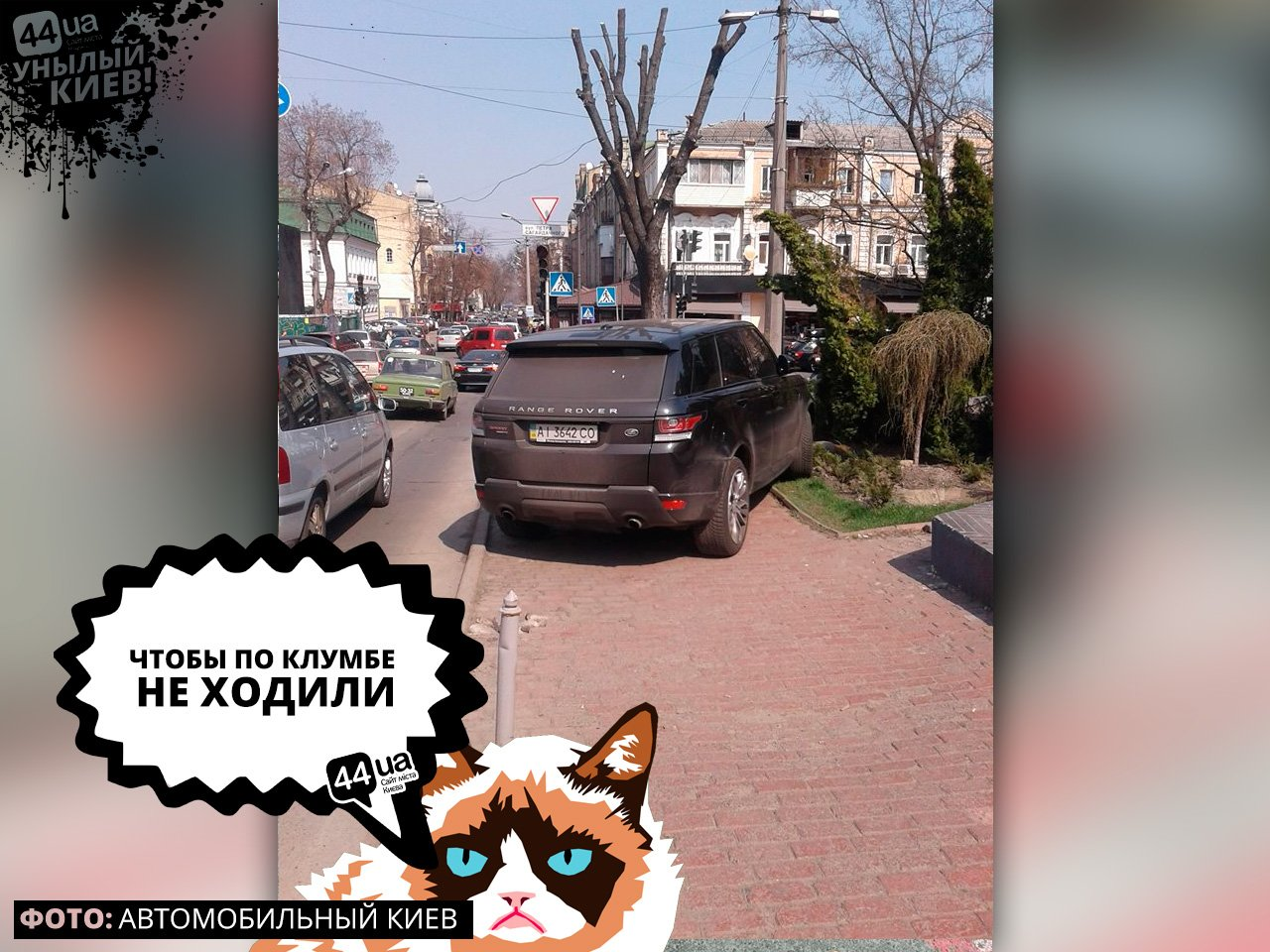 Унылый Киев: ТОП-7 героев парковки, живущих в столице, фото-6