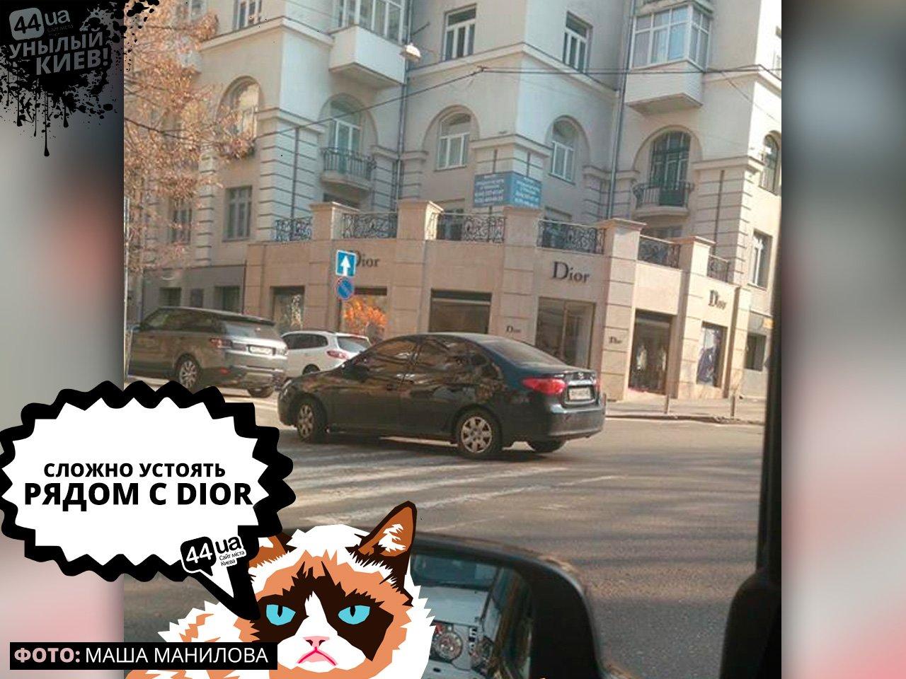 Унылый Киев: ТОП-7 героев парковки, живущих в столице, фото-3