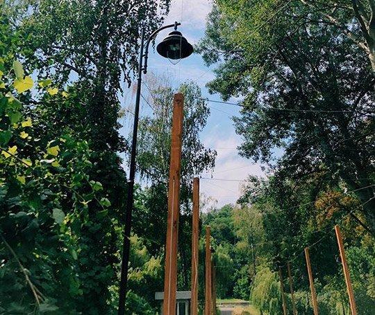 В парках Киева обновляют освещение, фото-1