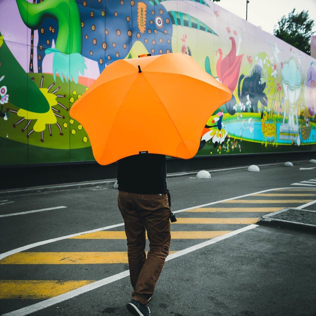 Привет из Новой Зеландии: как выбрать правильный зонт, фото-3