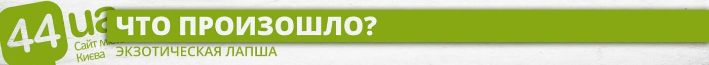 Тараканы в лапше: киевскому журналисту угрожали из-за разгромной статьи, фото-1