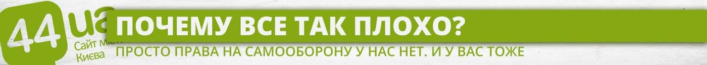 Завтра в Киеве пройдет марш за право на самооборону: почему это важно, фото-1
