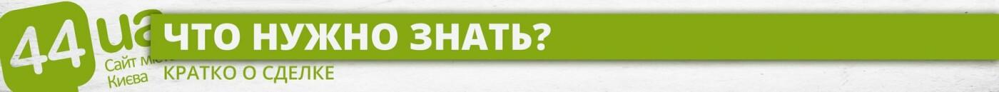Не тактика, а стратегия: Dragon Capital покупает ТЦ на Позняках, - ИНФОГРАФИКА, фото-1