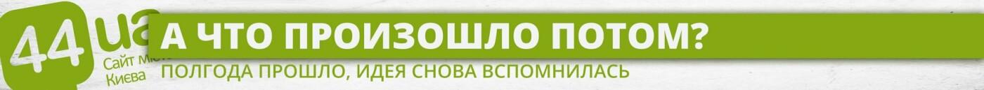 Нужна зоополиция: как Киев готовился и не приготовился к новой службе, фото-3