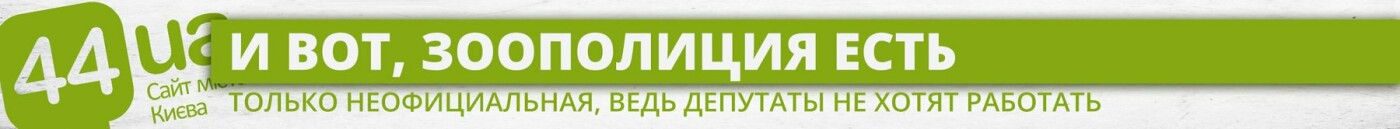 Нужна зоополиция: как Киев готовился и не приготовился к новой службе, фото-4
