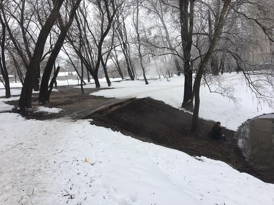 В озере на Теремках заживо сварились рыбы и черепахи: в соседнем водоеме начали проверку, фото-1