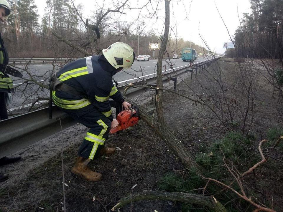 Из-за непогоды киевские спасатели 30 раз выезжали на вызовы, - ФОТО, фото-4