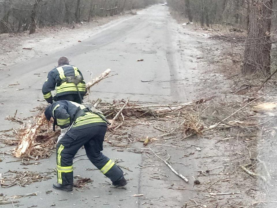 Из-за непогоды киевские спасатели 30 раз выезжали на вызовы, - ФОТО, фото-5