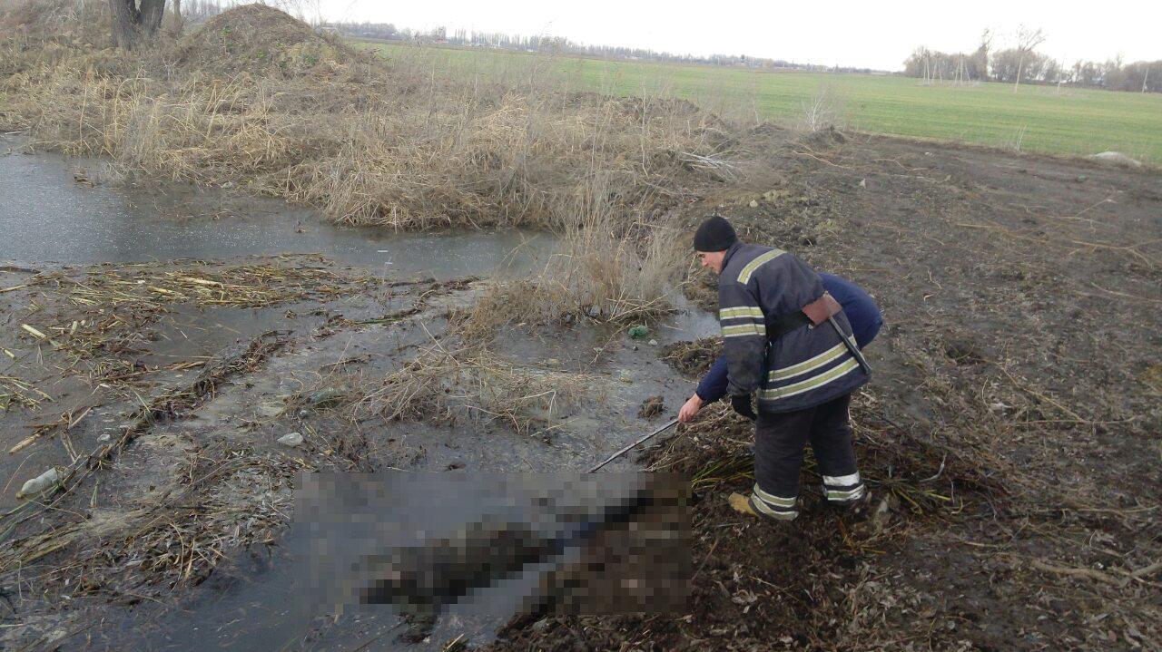 Под Киевом из пруда достали тело человека, - ФОТО, фото-1
