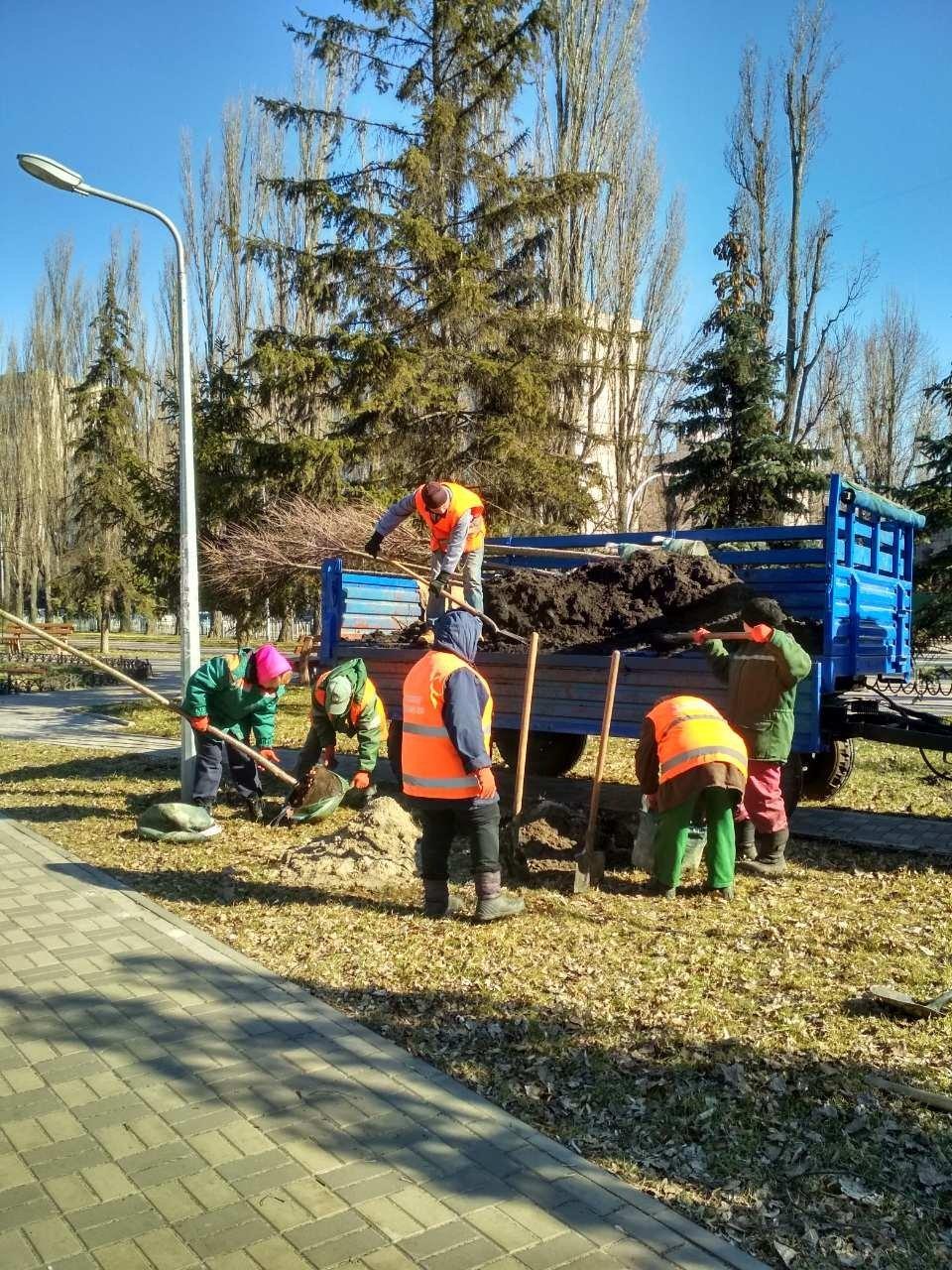 На Русановской набережной в Киеве высадили новые сакуры, - ФОТО, фото-1