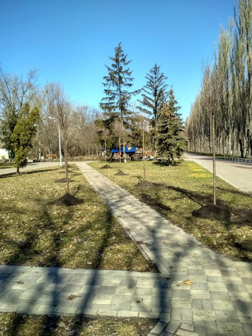 На Русановской набережной в Киеве высадили новые сакуры, - ФОТО, фото-2