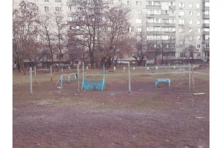На одной из улиц Киева просят обустроить площадку для выгула и тренировки животных, фото-1, Фото: Людмила Радич