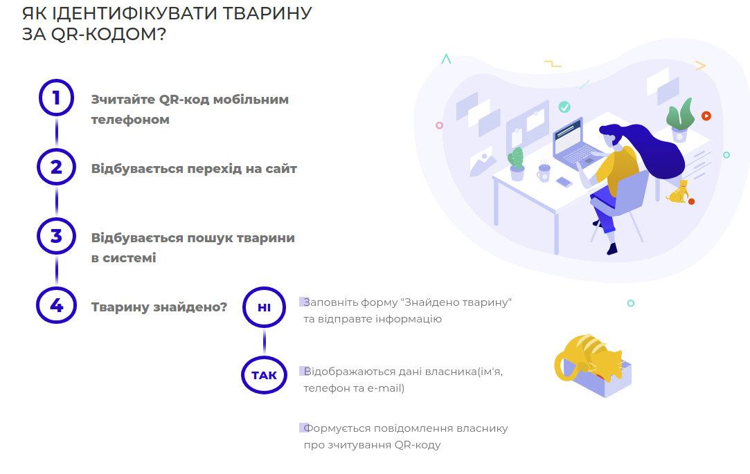 Не теряй кота: в Киеве представили систему регистрации домашних и бездомных животных, фото-2