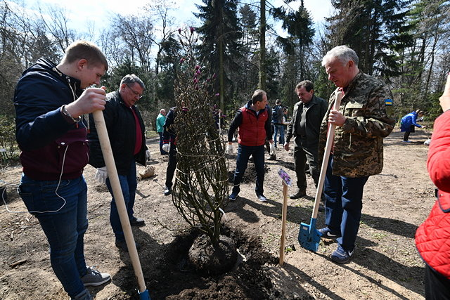 В Киеве обустроили самый большой сад магнолий, - ФОТО, фото-3