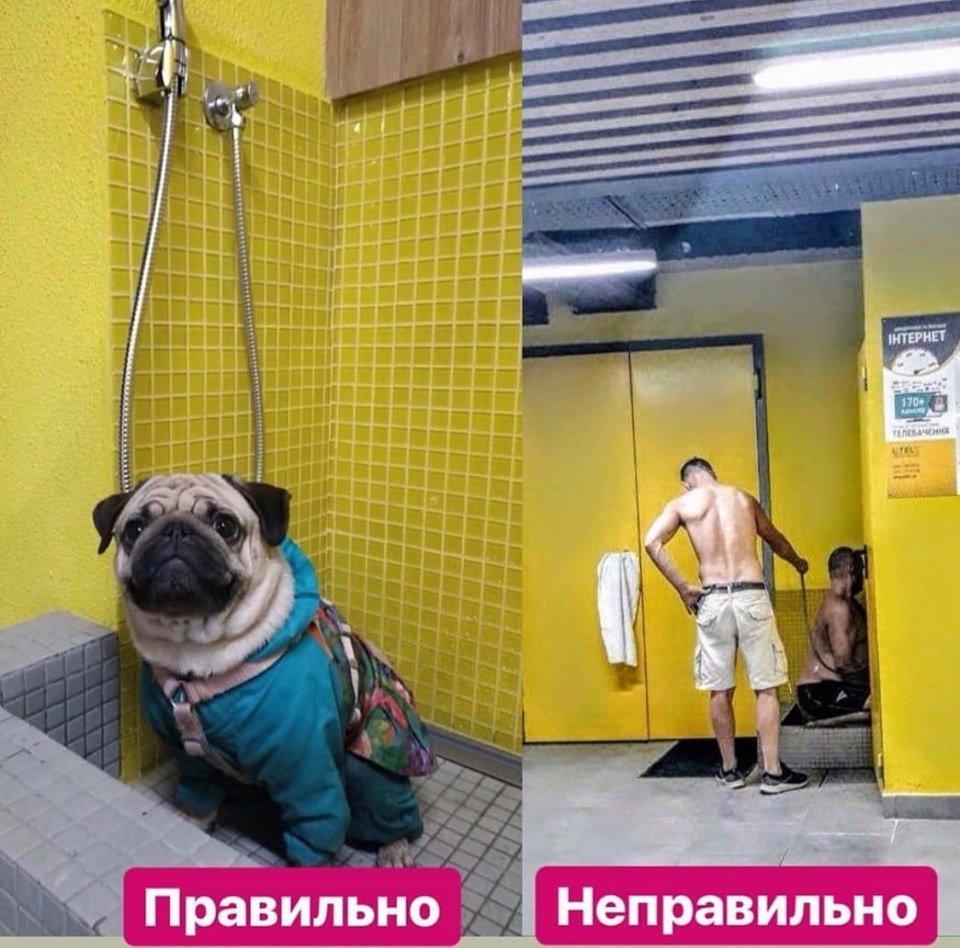Фото: типичный Киев