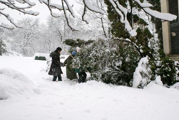 Каким был первый день зимы в Киеве 10 лет назад, ФОТО, фото-4
