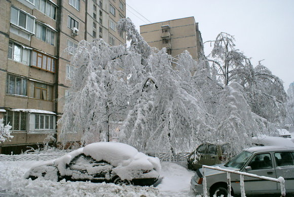 Каким был первый день зимы в Киеве 10 лет назад, ФОТО, фото-1