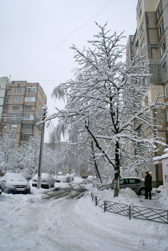 Каким был первый день зимы в Киеве 10 лет назад, ФОТО, фото-2