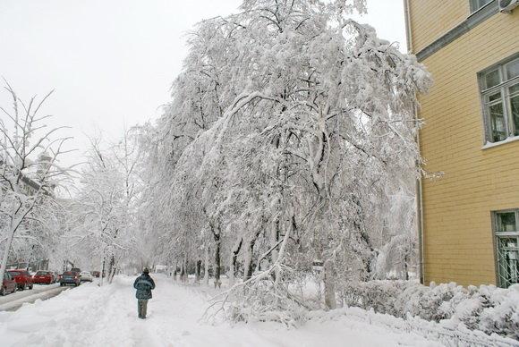 Каким был первый день зимы в Киеве 10 лет назад, ФОТО, фото-7