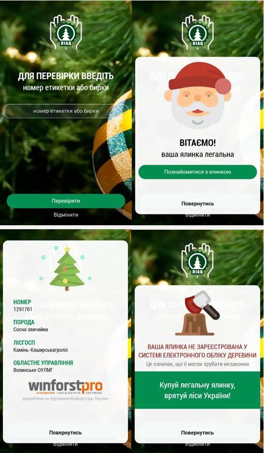 Как проверить легальность происхождения новогодней елки, - ФОТО , фото-3