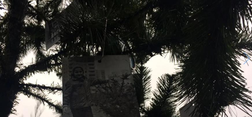 Впервые после взрыва на ЧАЭС: в Припяти установили новогоднюю ёлку, - ФОТО, фото-3, Фото ZIK