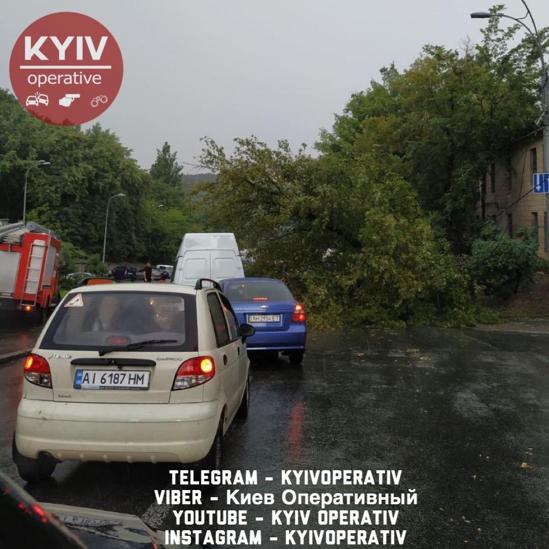 Дороги под водой, деревья на тротуарах: как выглядит Киев после ливня, - ВИДЕО, фото-1