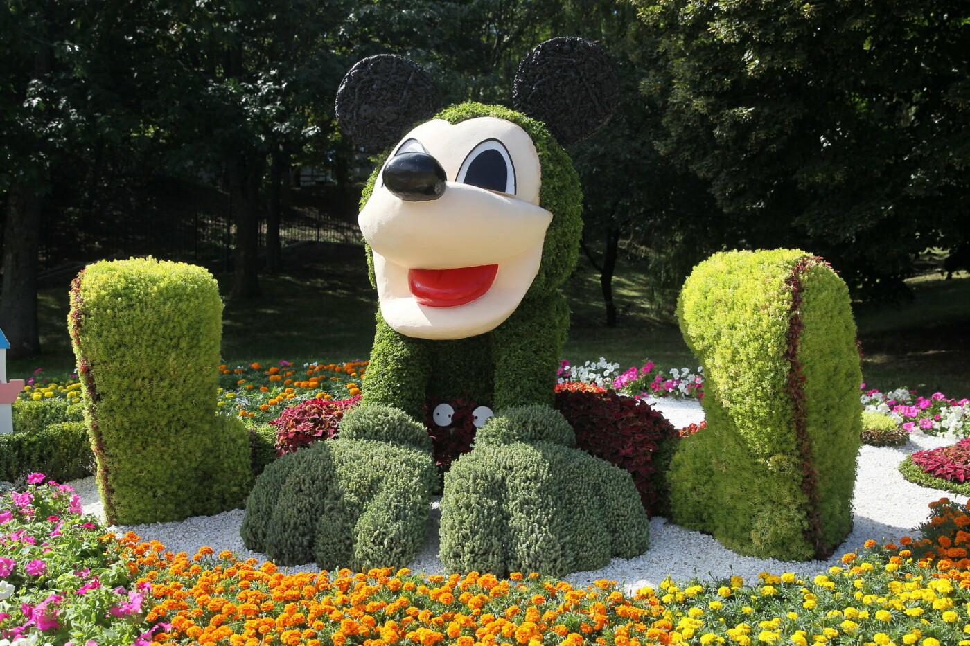 В Киеве на Певческом поле проходит выставка цветов «Мульт-ленд» - ФОТО, фото-2