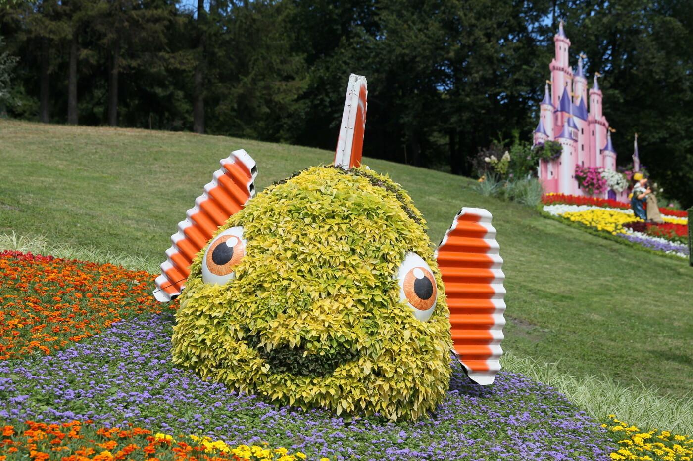 В Киеве на Певческом поле проходит выставка цветов «Мульт-ленд» - ФОТО, фото-11