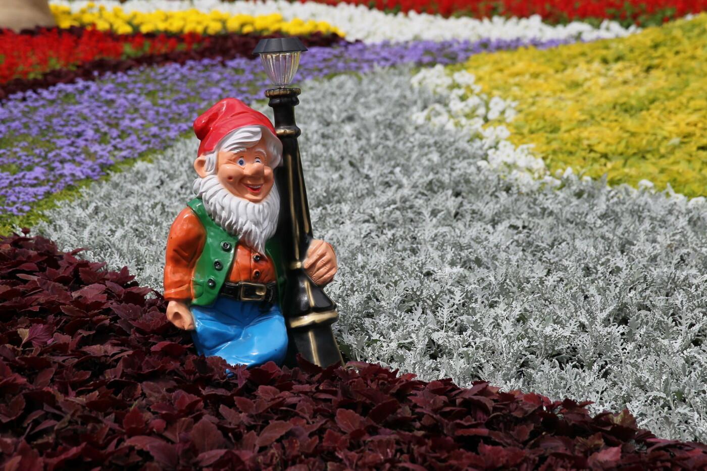 В Киеве на Певческом поле проходит выставка цветов «Мульт-ленд» - ФОТО, фото-7