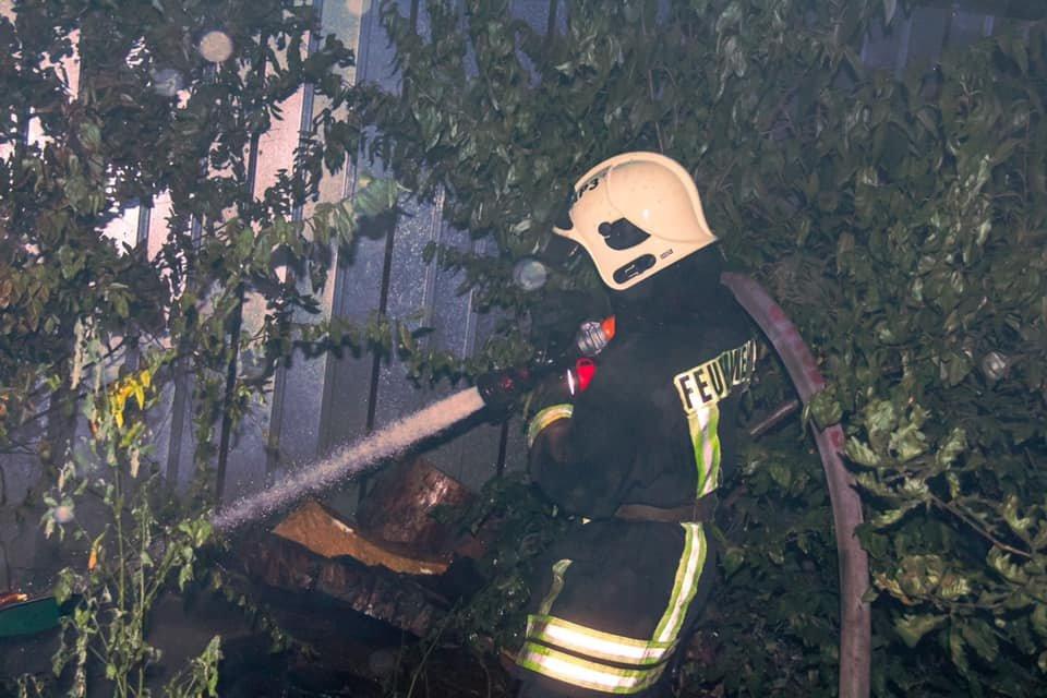 В Киеве возник пожар в вольерах для собак, фото-2