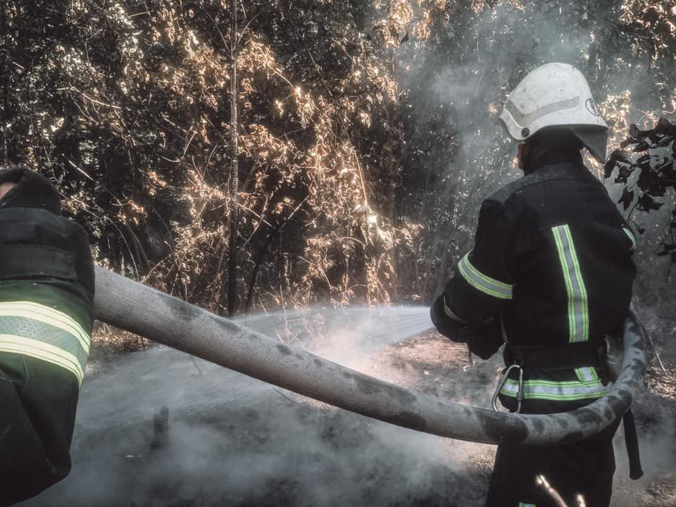 В Голосеевском районе Киева вспыхнул пожар - ФОТО, фото-1