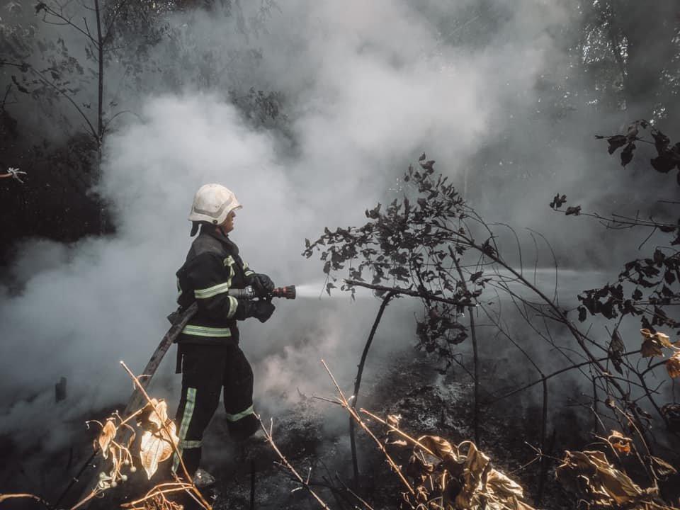 В Голосеевском районе Киева вспыхнул пожар - ФОТО, фото-2