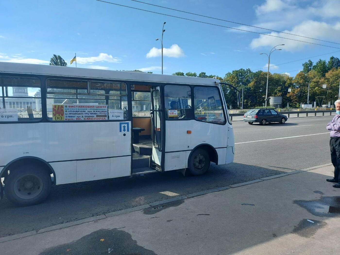 В Киеве перевозчик-нелегал самовольно придумал маршрут и возил людей, фото-1