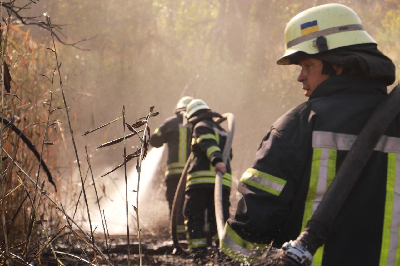 В Киеве продолжается ликвидация пожара на свалке в Дарницком районе - ФОТО, фото-6