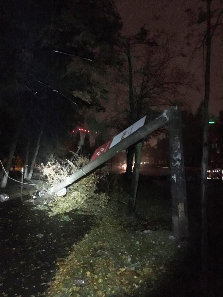 Ураган в Киеве сегодня ночью повалил десятки деревьев, ФОТО, фото-7, Фото Киевзеленстроя