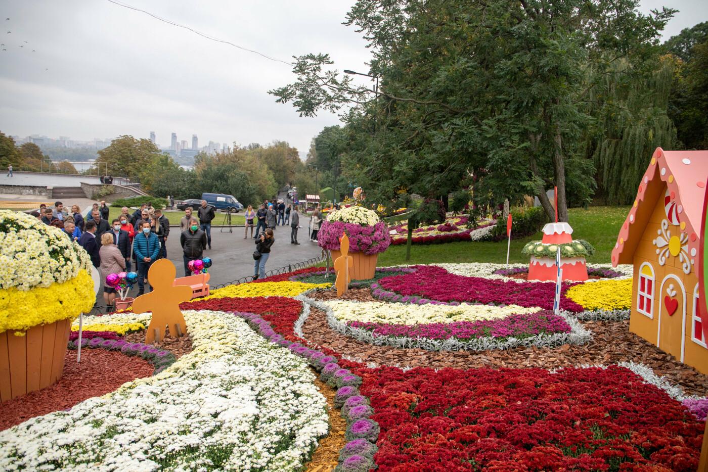 В Киеве на Певческом поле открылась выставка хризантем, ФОТО, фото-8