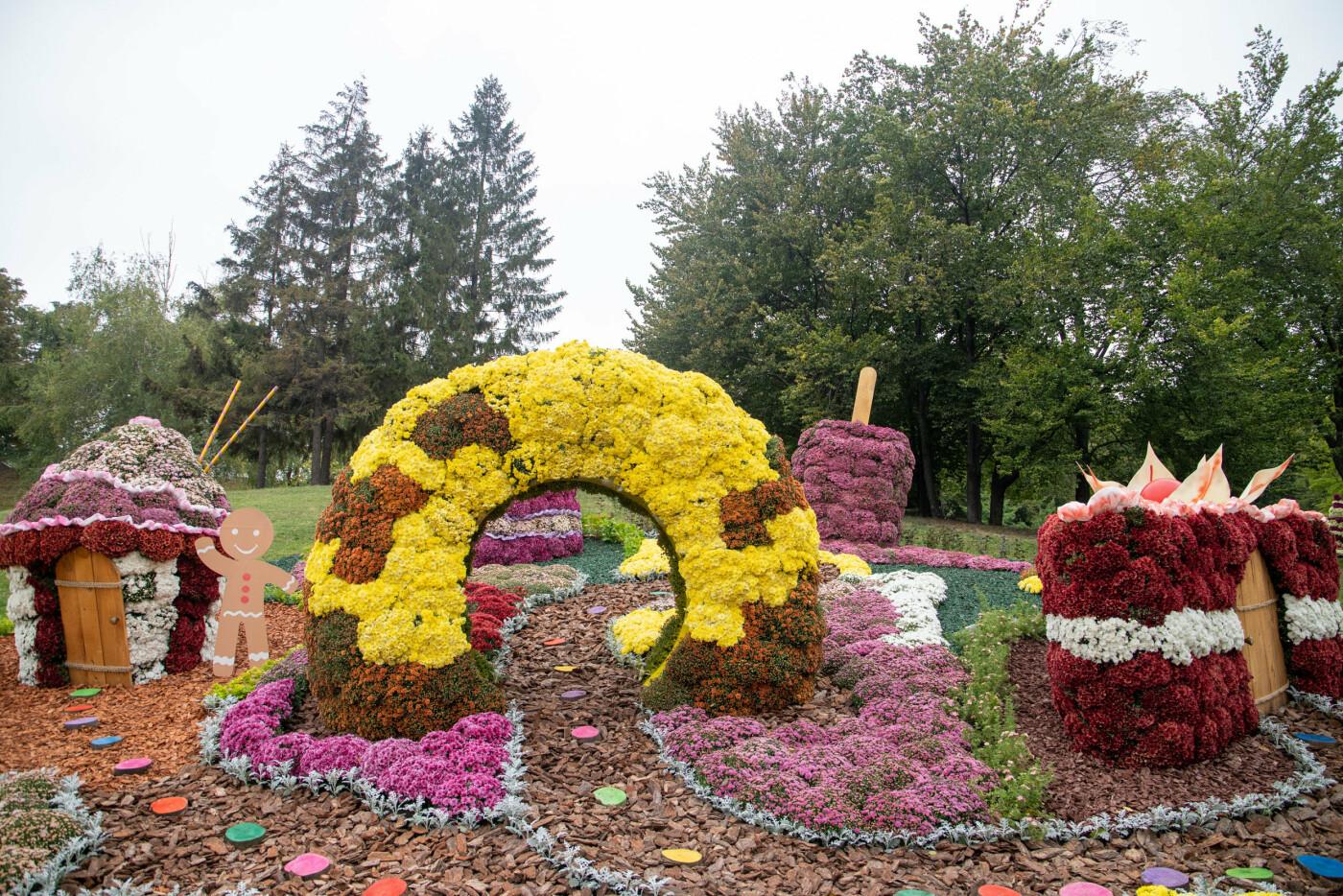 В Киеве на Певческом поле открылась выставка хризантем, ФОТО, фото-6