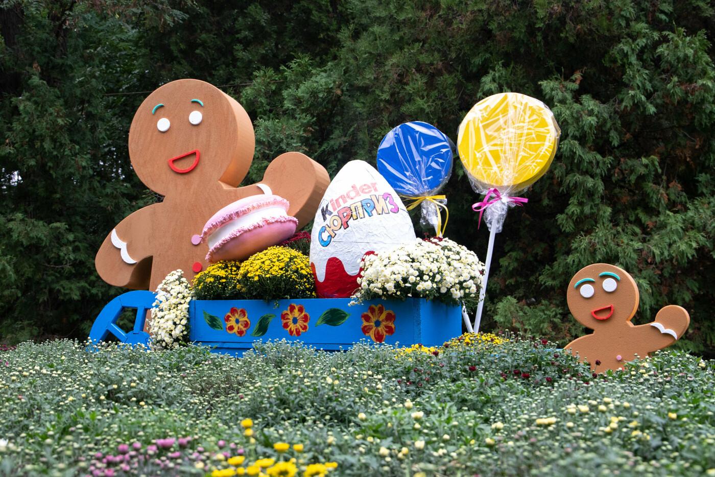 В Киеве на Певческом поле открылась выставка хризантем, ФОТО, фото-1