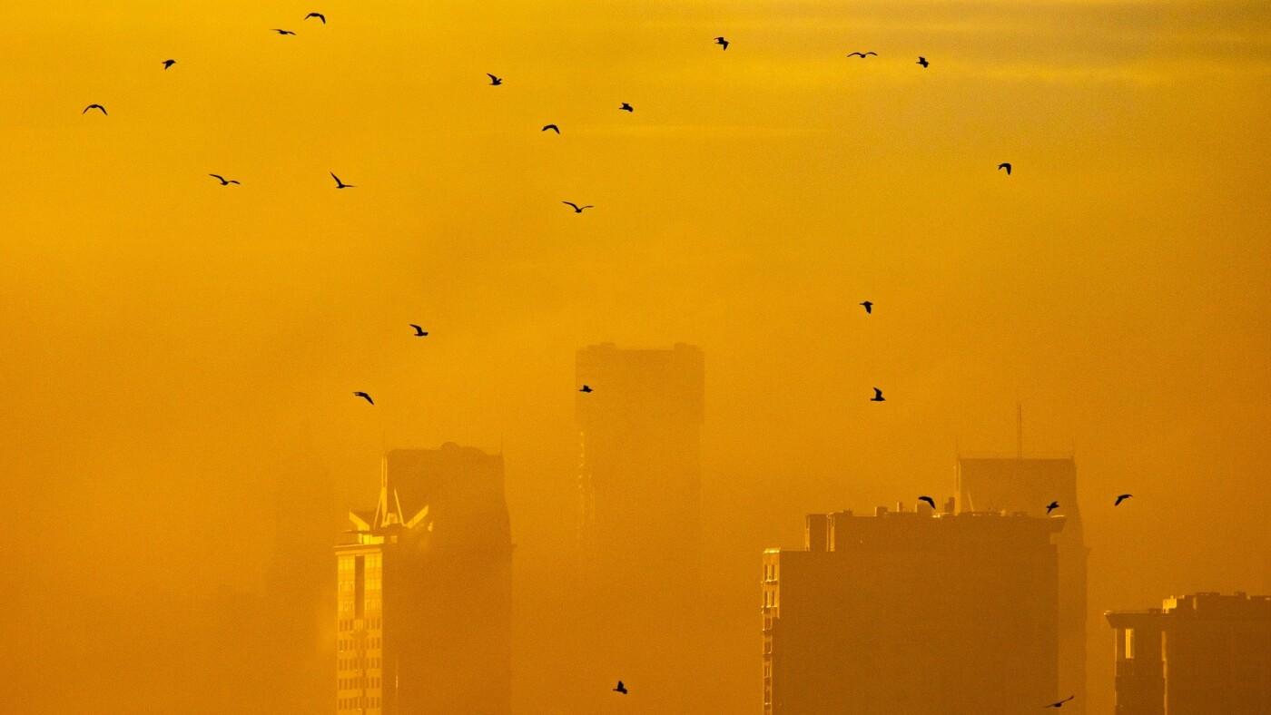 Туман в Киеве: жители столицы показали захватывающие фото ночного города , фото-5, Фото: Vladyslav Sodel