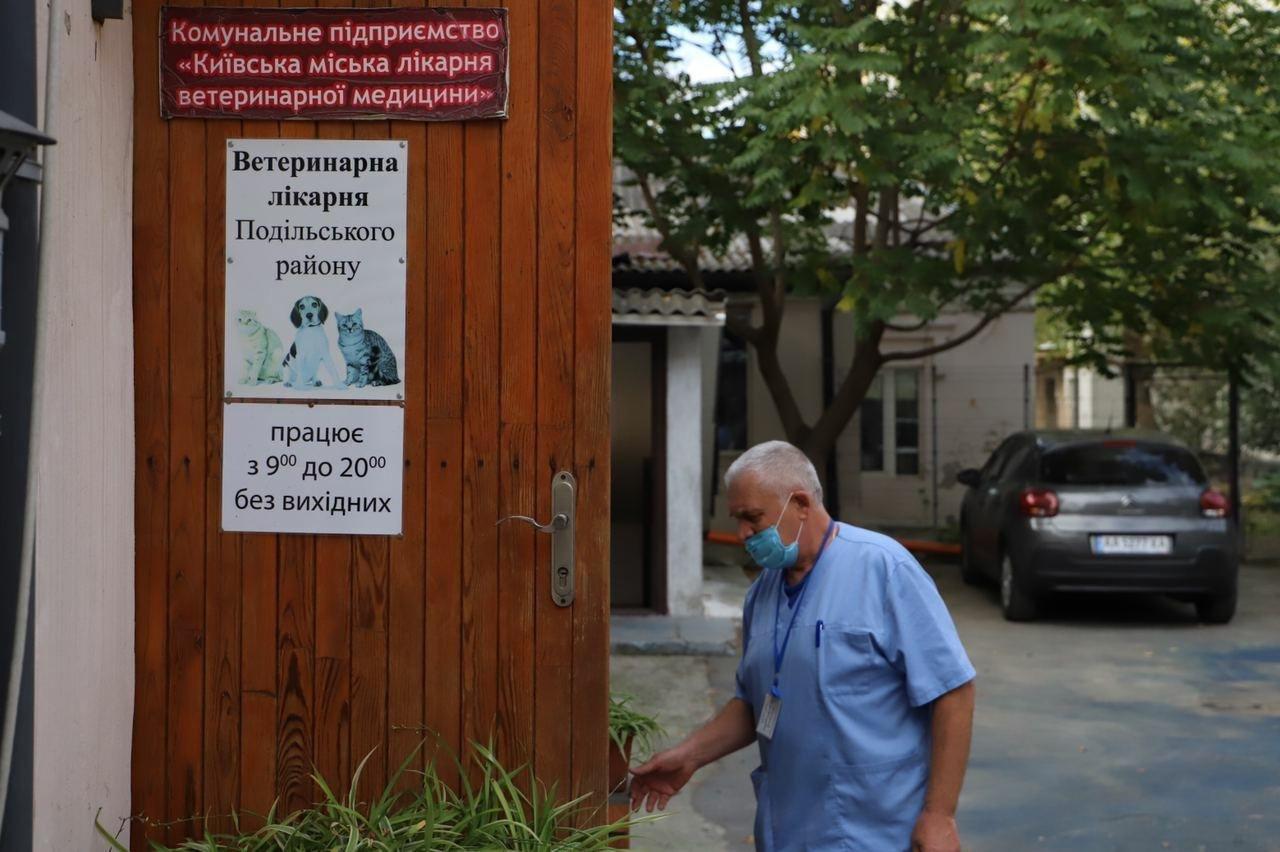 В Киеве на Подоле открылось инфекционное отделение для собак, ФОТО, фото-7