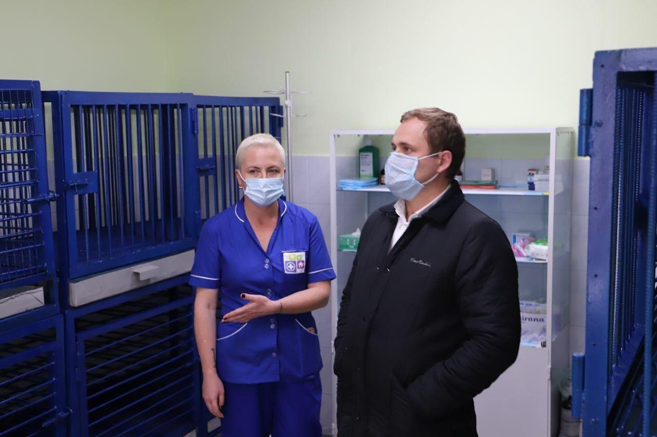 В Киеве на Подоле открылось инфекционное отделение для собак, ФОТО, фото-6